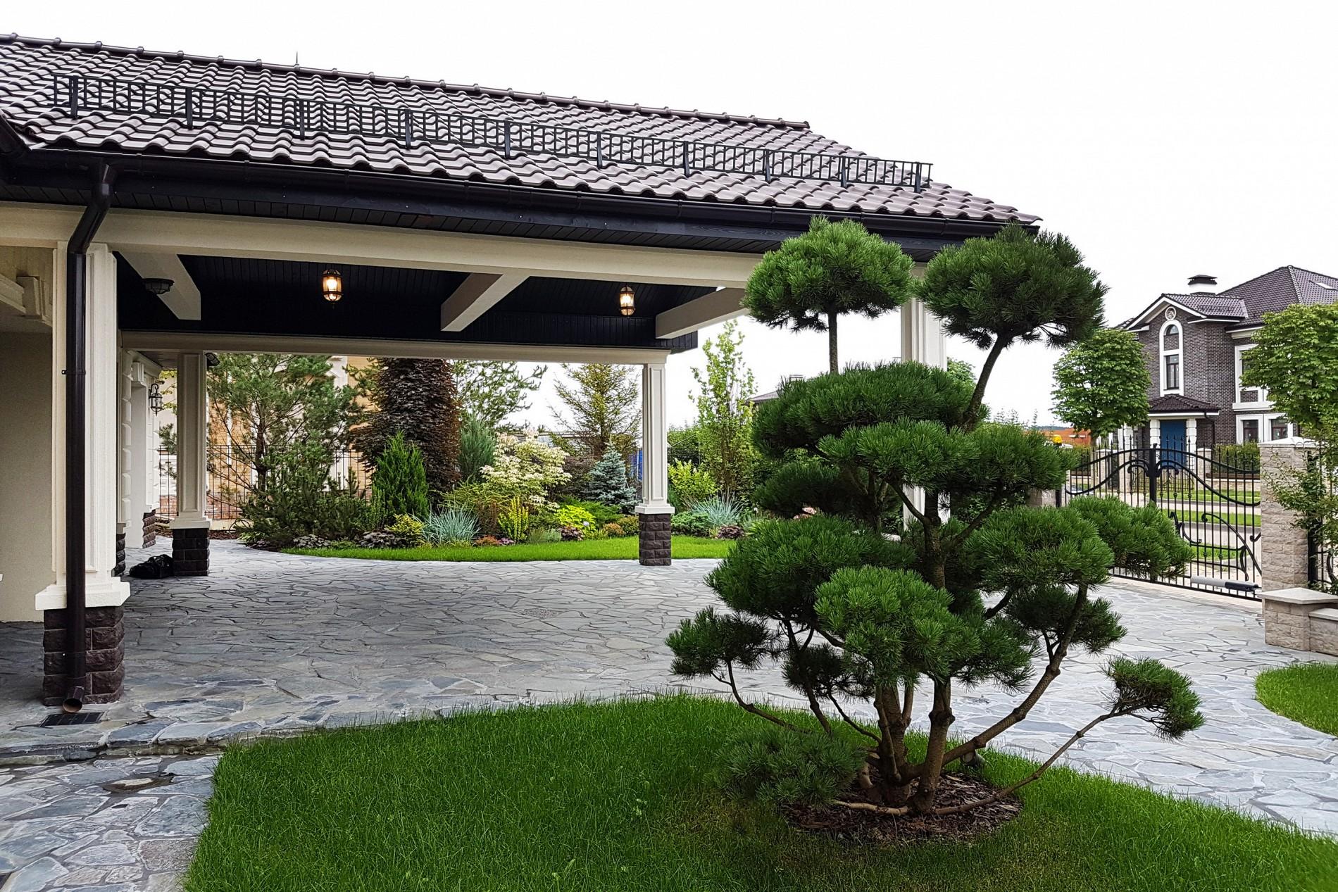 Ландшафтный дизайн загородного дома с гаражом. Сосна бонсай