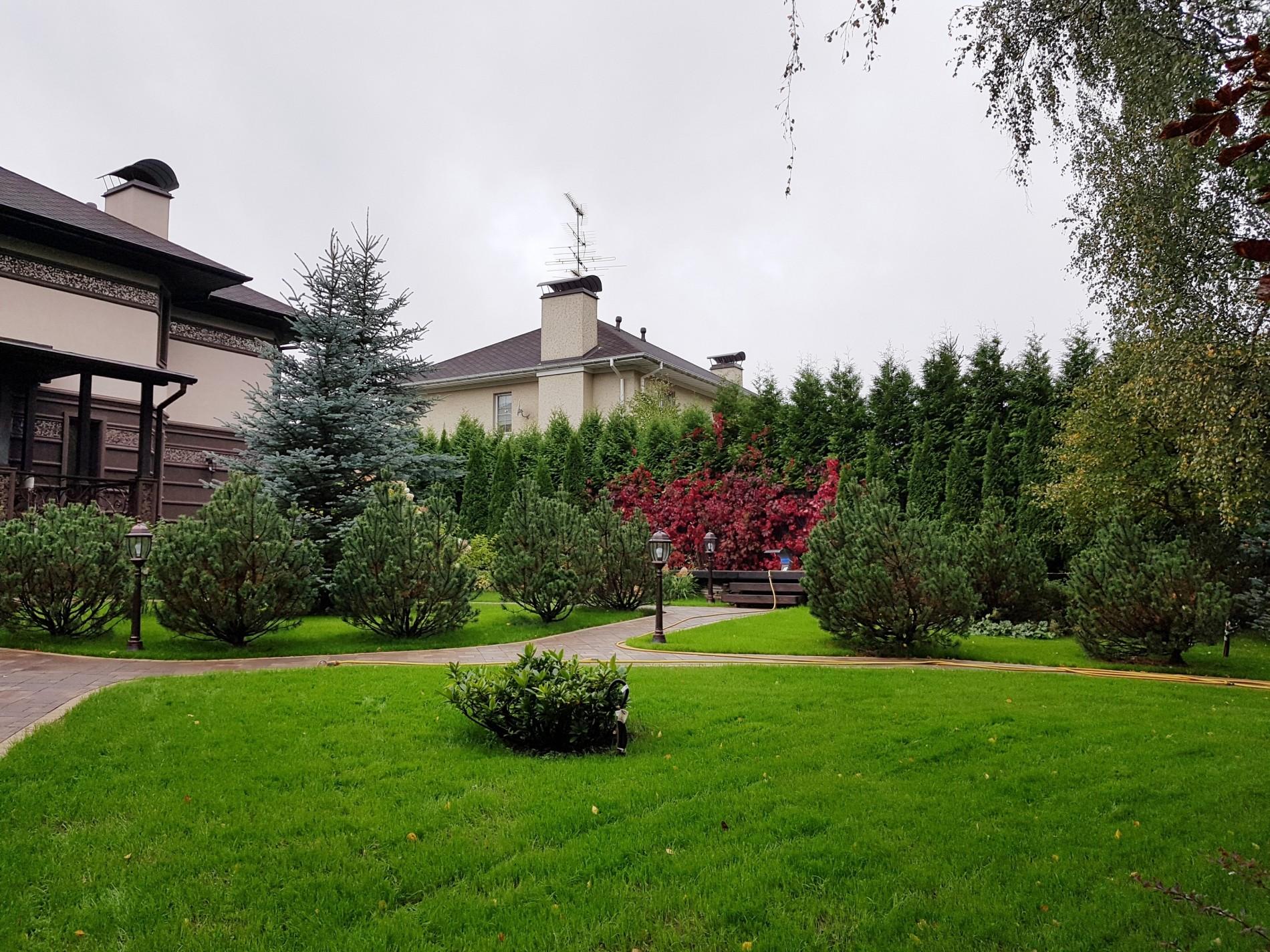 Фото ландшафтного дизайна загородного дома